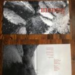 Gatefold Vinyl Cover
