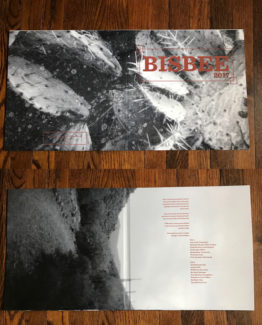 Gatefold Vinyl Cover
